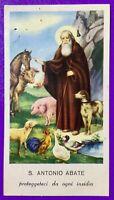 SANTINO HOLY CARD, SANT'ANTONIO ABATE -RIF. 7229
