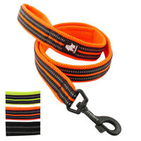 Truelove Dog Leash 4ft Nylon Reflective Soft Mesh Padded Running Walking Leads