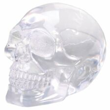 Clear Skull Figurine Statue Halloween Decoration
