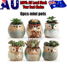 6 Pcs Ceramic Mini Pot for Succulent Plant Bonsai Flower Cactus Flower Pots