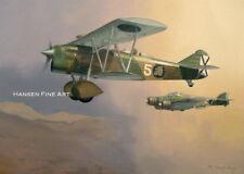 Fiat CR.32 Italian Plane Limited Edition Aviation Painting Art Print Darryl Legg