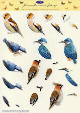 3D Bogen Motivbogen Etappenbogen Grußkarte Scrapbooking Vogel Vögel (267)