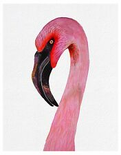 Pink Flamingo Bird Gouache Watercolour Painting Signed Limited Edition A4 Print