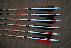 SIX BEMAN ALUMINUM ARROWS 2117 - FEATHERS -