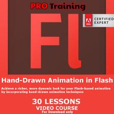 Flash Animation Lessons Tutorials Training Video PRO Course Skills
