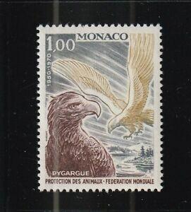 Eagle, Bird,