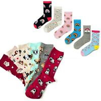 Womens Cute Socks ladies Rainbow Dog Animal Socks colourful girl socks Size 4-7