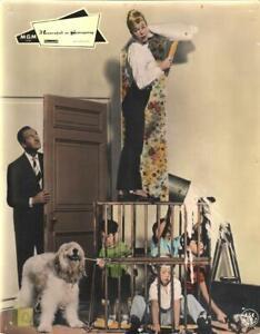 Meisterschaft im Seitensprung - Doris Day, David Niven - Aushangfoto #25