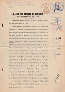 Bando per la vendita di immobili comune di Capannori - Pretura Lucca anno 1928