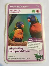 Taronga Zoo Woolworths Aussie Animal Card #71 Rainbow Lorikeet