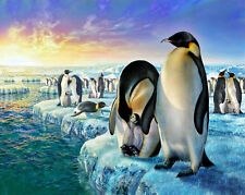 Home decor Art Canvas Print,Oil Painting,penguins Arctic Glacial Lake Sun 16x20
