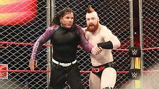 Jeff Hardy vs Sheamus WWE Extreme Rules 4x6 Photo 01