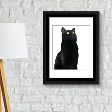 Wall Decoration Frames Cute Black Cat Poster Art School Café Office Home Décor