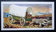 Voortrekkers   South African Ox Wagon     Vintage Card  VGC