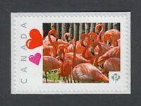 PINK FLAMINGO bird, Picture Postage Canada 2014 p76bd5/4