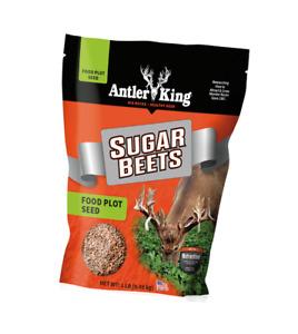 Antler King Sugar Beets Food Plot Seed 1lbs