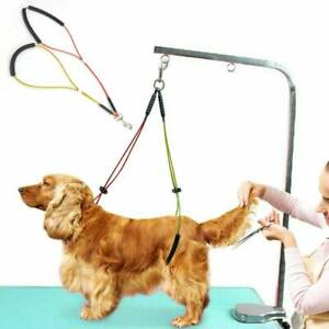 1X No-sit Pet Haunch Holder Dog Grooming Restraint Harness Leash Loop for Table