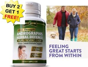 Andrographis Immune System Booster - Herbal Natural Antioxidant Immune Defense