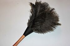 One ( 1) grey ostrich feather duster 35cm wood shape handled stained 1st grade