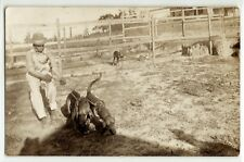 Man with hunting dogs, hounds in cages, c. 1915; real photo postcard RPPC