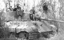 B&W WWII Photo German Tiger II Pzkpfw. VI Abandoned World War Two   WW2 / 4020