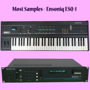 Most SAMPLES: Ensoniq ESQ-1, ESQ-M, SQ-80
