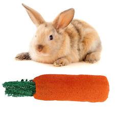 Rabbit Guinea Pig Chinchilla Hamster Chew Natural Loofah Radish Molar Toys