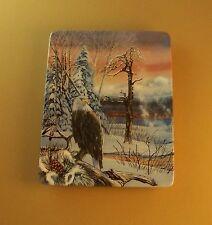Honoring the Spirit Soaring Spirit Plate Julie Kramer Cole American Indian #3