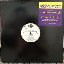 """FU-SCHNICKENS - SUM DUM MUNKEY / REMIX / VISIONS (20/20) (12"""")  1994!!!  RARE!!!"""
