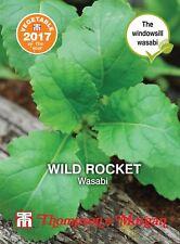 Thompson & Morgan - Vegetable - Herb Wild Rocket Wasabi - 500 Seeds