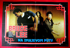 FURY OF THE DRAGON 1970' BRUCE LEE KUNG FU MARTIAL ARTS EXYU MOVIE POSTER