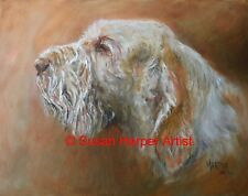 More details for sale italian spinone signed dog print by susan harper unmounted