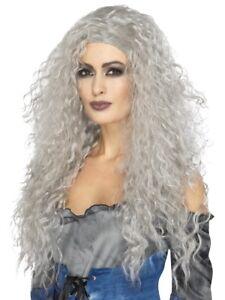 Banshee Wig Grey Long & Messy Adult Womens Ladies Halloween Fancy Dress