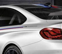 DTM Aufkleber Champion Edition  BMW M4 M3 GTS F80 F40 M5 M6 Decal Nurburgring