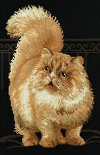 Riolis Persian Cat