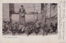 NAPOLI - costumi   n.86  1906