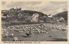 AK alt - Höhenluftkurort Marienberg / Westerwald