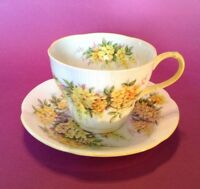 Royal Albert Tea Cup And Saucer - Blossom Time Laburnum - White Yellow - England