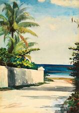 Winslow Homer Road in Nassau     Wall Art  Canvas