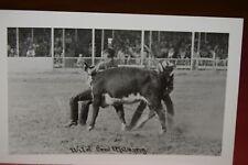Real Photo Postcard WILD COW MILKING Winner, South Dakota