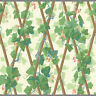 Large Elegant Lattice with Vines and Berries Triple Roll Wallpaper  CP6171