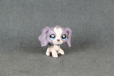 LPS #672 LPS Cocker Spaniel Purple Dog Nice Collection