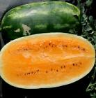 Tendersweet Orange Watermelon Seeds, NON-GMO, Heirloom, FREE SHIP