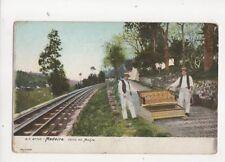 Madeira Carro Do Monte Vintage U/B Postcard 168b