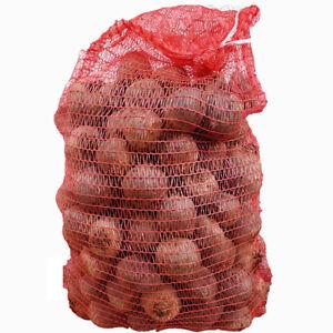 Rote Bete Knollen 10kg