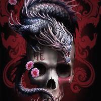Full drill 5D Diamond Painting Skull Dragon Flower Fashion Handicraft 6523X