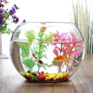 Round Clear Glass Vase Fish Tank Ball Bowl Flower Planter Terrarium