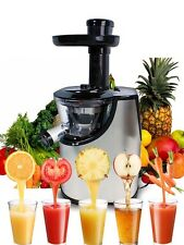 New Deluxe Stainless Steel Fruit Vegetable Power Slow Juicer Juice Extractor