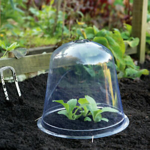 T&M Garden Bell Cloche Mini Greenhouse Weather & Pest Plant Protection Cover NEW