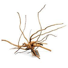 Spider Wood Medium SR Aquaristik